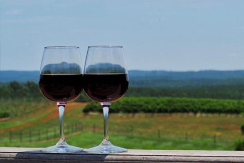 best wineries in Charlottesville
