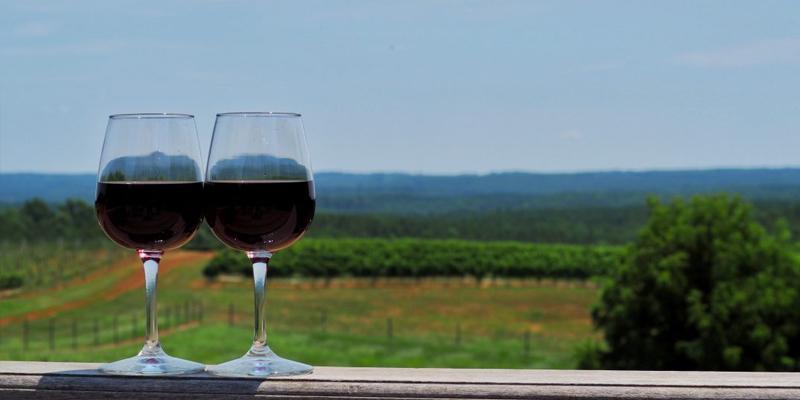 best Charlottesville area wineries