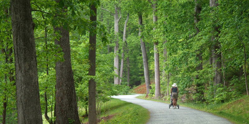 walking the Saunders-Monticello Trail on Route 53 in Charlottesville