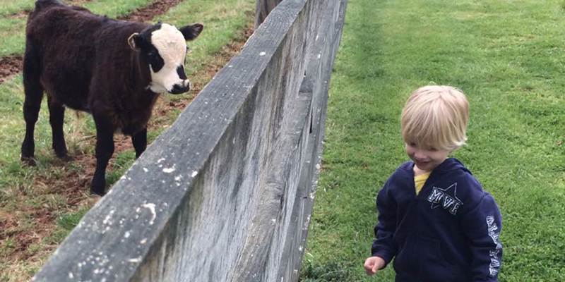 visit farm animals and James Monroe's Highland home in Charlottesville
