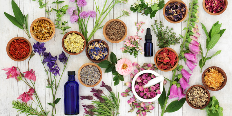 health benefits of herbal supplements