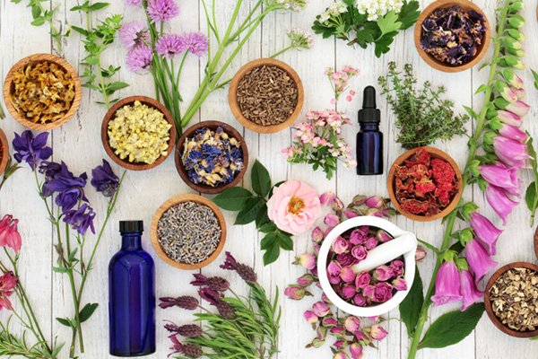 Herbal remedies you should know.