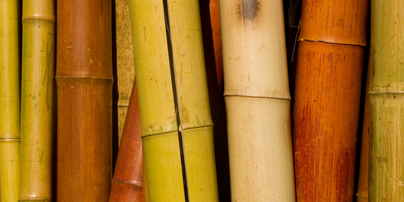 bamboo fiber is not environmentally friendly