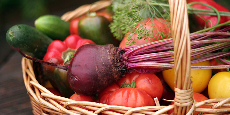 best organic food delivery service