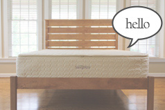 Savvy Rest pocketed coil mattress