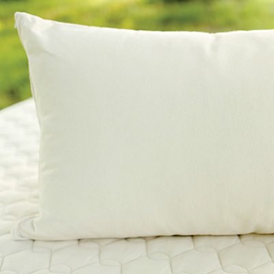 buy an organic kapok pillow