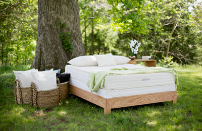 Savvy Rest natural mattresses