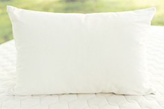 organic kapok pillow