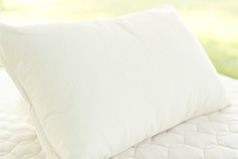 Organic pillow from Savvy Rest