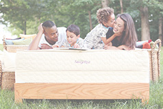 Most Savvy Rest organic mattresses are made with natural latex