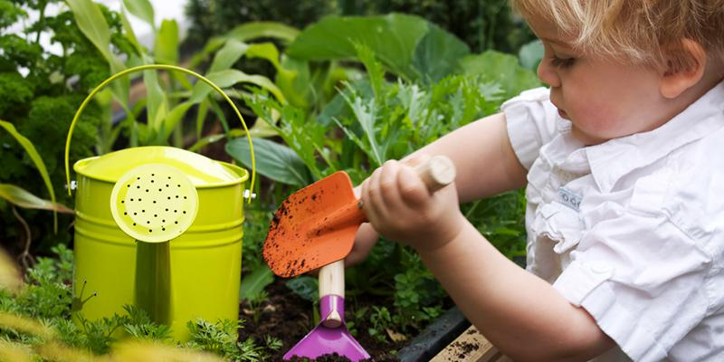 toddler learning how to garden