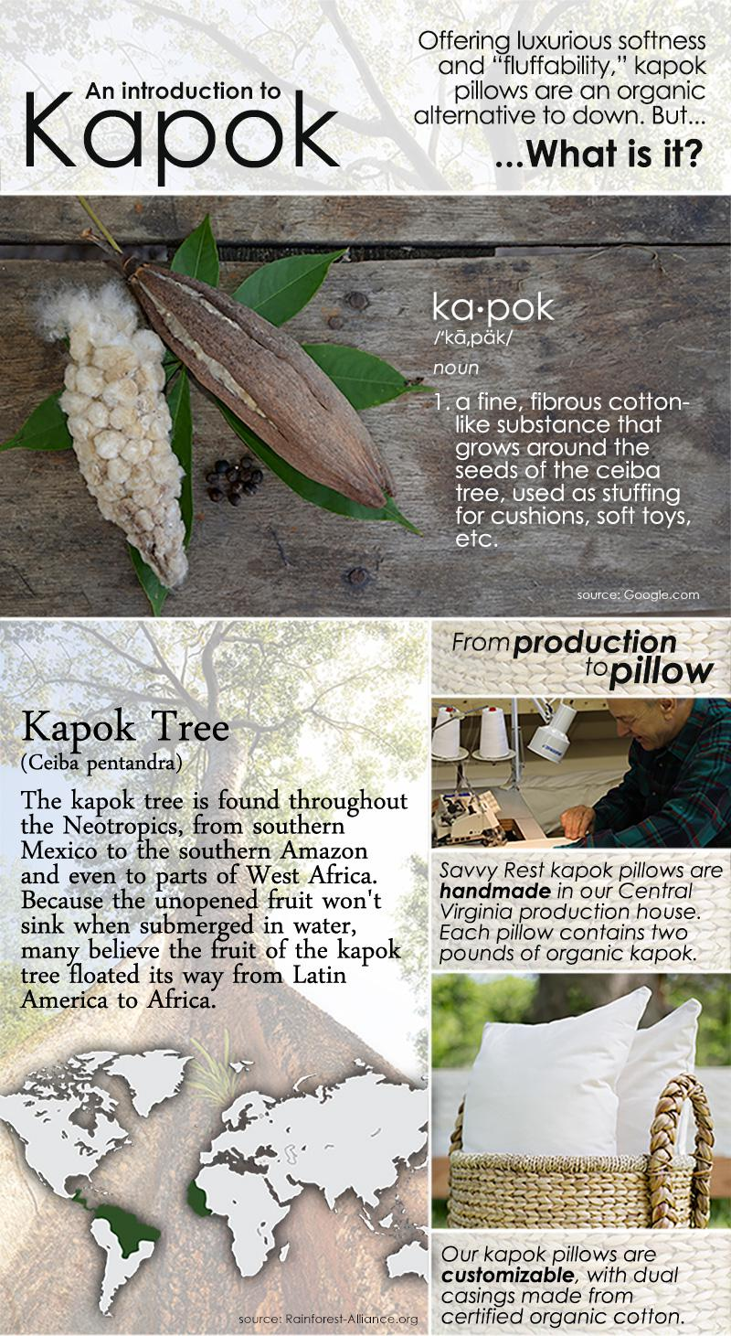 Organic kapok pillow information