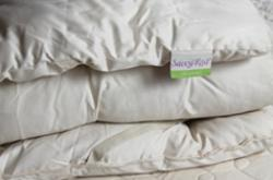 certified organic wool mattress topper