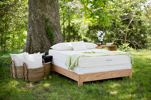 Savvy Rest organic mattresses