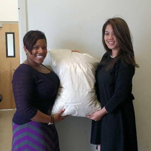Savvy Rest Natural Bedroom pillow donations
