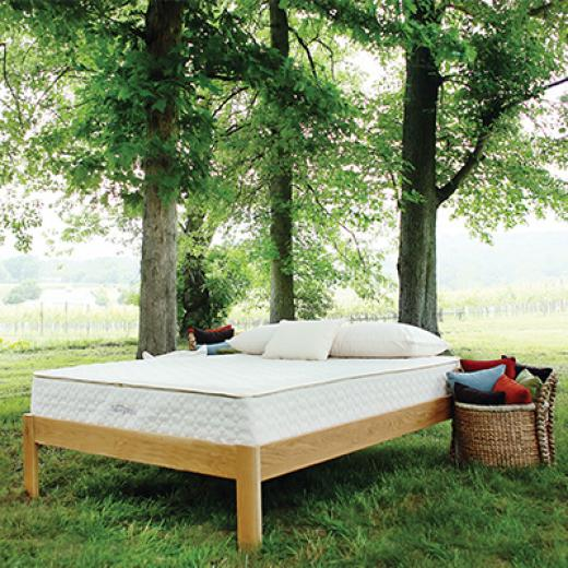 Savvy Rest Natural Bedroom. Organic Mattresses In Rockville