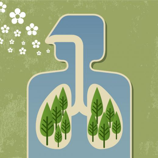 We breathe in chemicals (good or bad) from the air