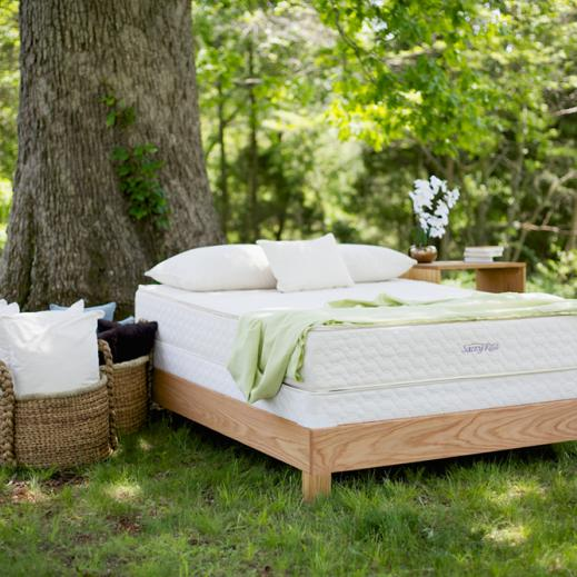 Serenity Organic Latex Mattress Savvy Rest