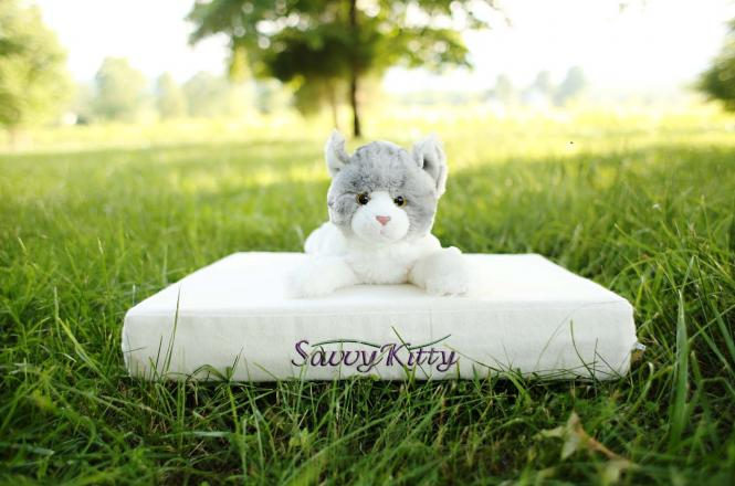 Organic cat bed - The Savvy Kitty