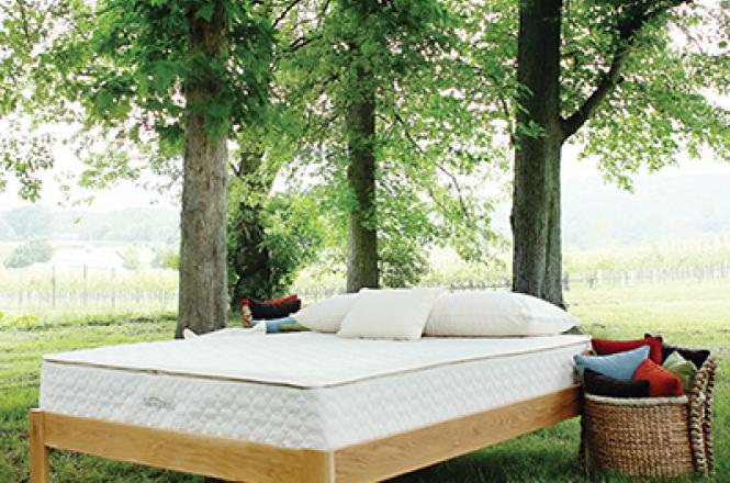 Mattress Discounters Berkeley Organic mattresses in the DC metro area | Savvy Rest Natural Bedroom
