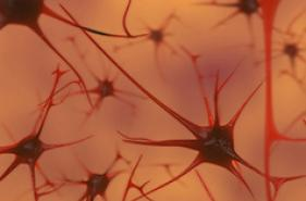 poor sleep may be linked to the development of alzhemiers
