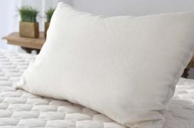 best non-toxic pillow