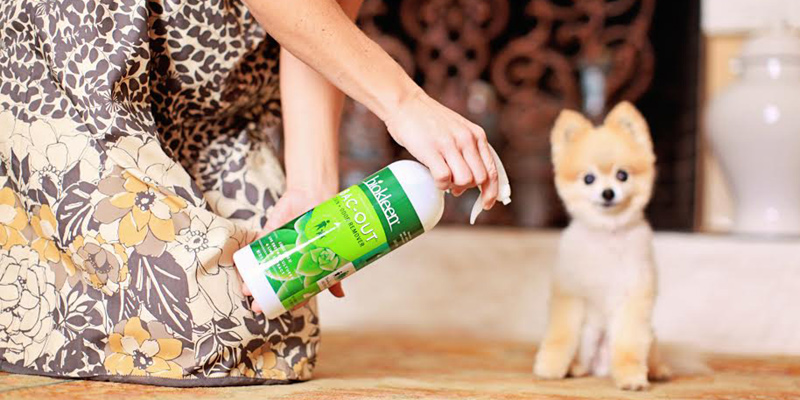 biokleen eco-friendly cleaning products
